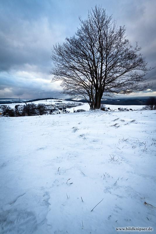 unter dem Schnee