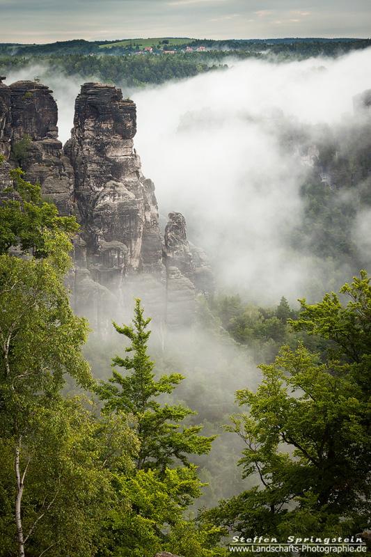 Felsen im Nebel