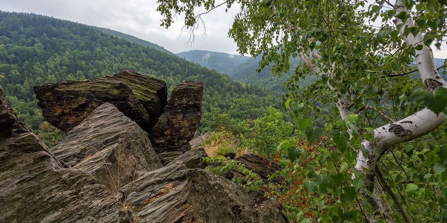 Schieferfelsen ragen aus den Bäumen über dem Tal