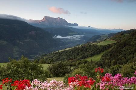 Südtirol Schlern