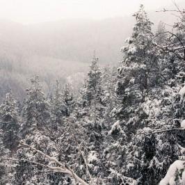 Winter im Schwarzatal