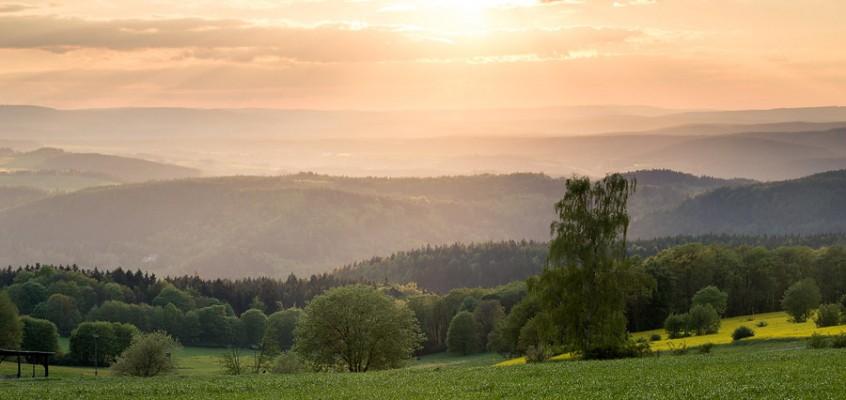 Bild der Woche: Frühlingssonne
