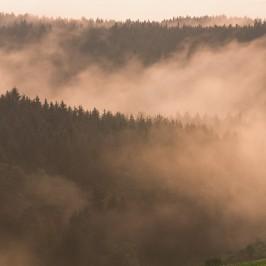 Bild der Woche: Aufziehender Nebel