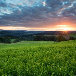 Bild der Woche: Sonnenuntergang