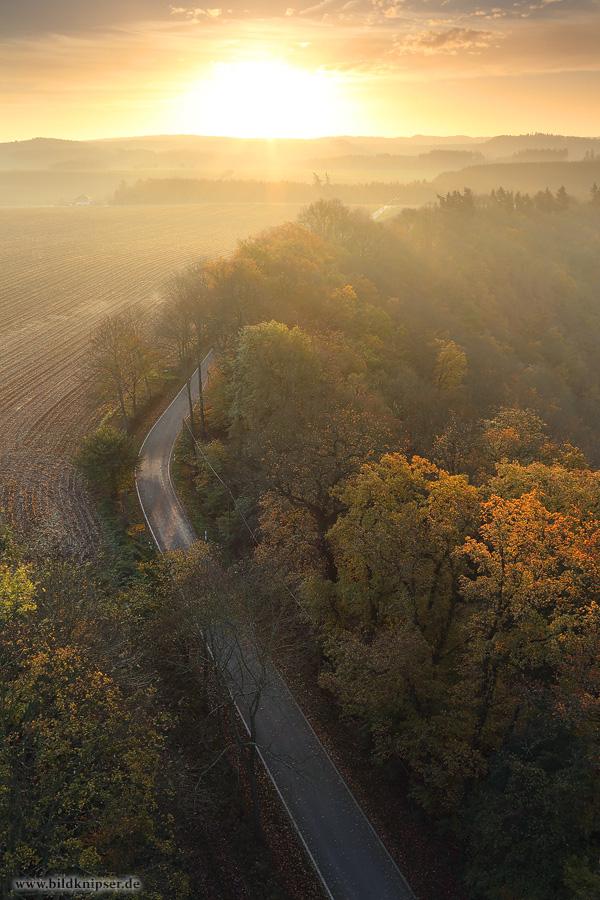 Blick von oben auf Herbstbäume und eine Landstraße bei Sonnenaufgang