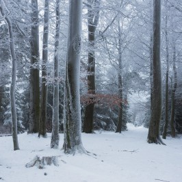 Start in den Winter