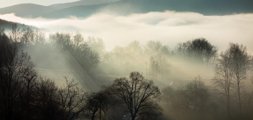 Naturfotochallenge – jeden Tag ein Foto